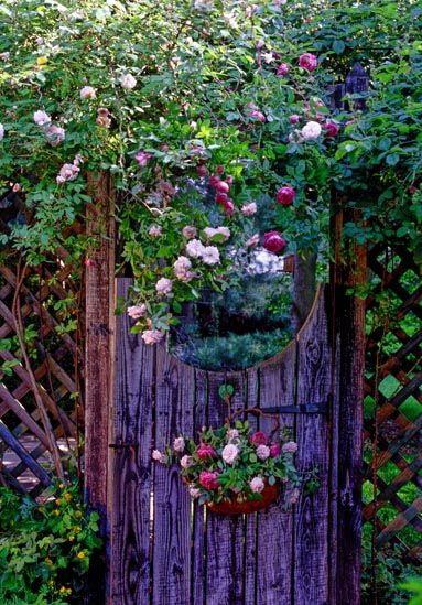 fialová brána